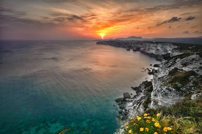 sea_horizon_clear_sunset_flowers-other